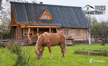 Калужская область, лесные угодья «Сафари Паркъ»