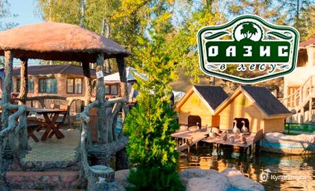База отдыха «Оазис в лесу», Московская область