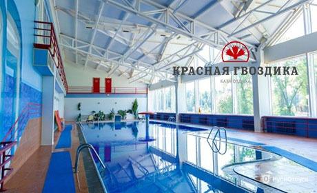 База отдыха «Красная гвоздика», Московская область
