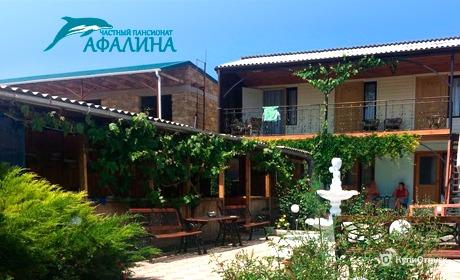 Крым, гостевой дом «Афалина»