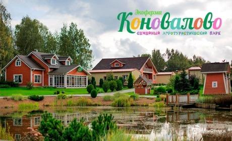 Отдых в экоотеле «Коновалово»